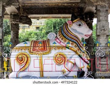 The statue of the bull Nandi, Shiva riding an animal, at the entrance to the ancient temple Ekambareshvara, XVI century, Kanchipuram, India