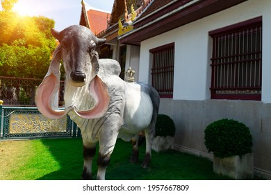Statue cow of cattle and breeder. Bull,ox that Chinese zodiac of year of the cows.Sacred white bulls that Thai peple called.