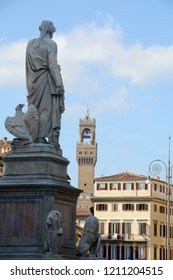 The statue of Dante Alighieri, author of the Divine Comedy, and the historic buildings of Piazza Santa Croce in Florence and in the background the tower of Arnolfo.