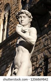 Statue of the David of Michelangelo Buonarroti, masterpiece of Renaissance sculpture in Piazza della Signoria - Florence, Italy, Europe