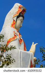 Statue of Guanyin in large measure to heal the heart and soul of a Buddhist temple, the beautiful parks of the country thailand.