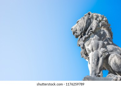Statue of lion near cathedral in Magdeburg at smooth gradient background, Germany, Autumn, closeup, details