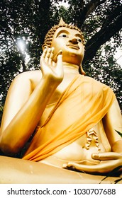 The Statue of the Lord Buddha in a sitting position under the tree. Golden Buddha image under the big tree in the forest. Old golden buddha image on base under big tree.