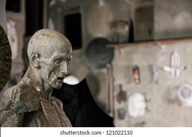 Statue in sculptor workshop closeup photo