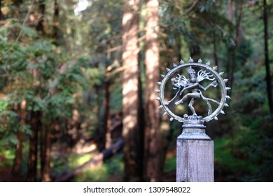 Statue sculpture of the Indian God Shiva dancing in a redwood forest.