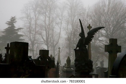 statues of angels in misty atmospheric graveyard