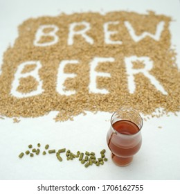Stay home and brew beer.