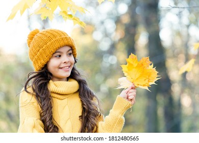 Staying beautiful any season. kid hold autumn leaf. kid clothes fashion. beauty style. happy girl relax in autumn nature. small girl wear knitted hat and sweater. child enjoy fall weather in forest.