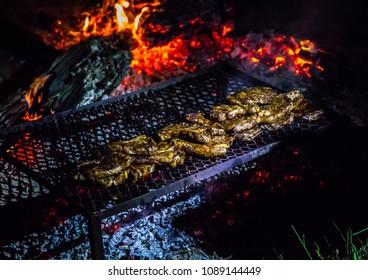 Steaks on an open campe fire in the wilderness of Botswana