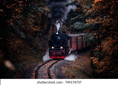 Steam locomotive drives through dark autumn forest