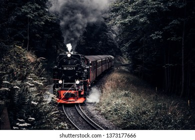 Steam locomotive travels in a curve through the forest