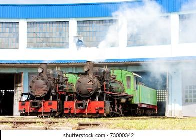 steam locomotives in depot, Kostolac, Serbia