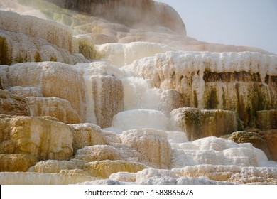 Steam rises from one of the amazing thermal waterfall terraces of Mammoth Hot Springs.