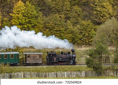 Steam Train from Romania in the Vaser Valley