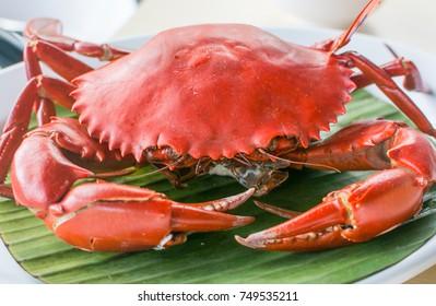 Steamed black crab