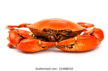 Steamed black crab in isolated on white background