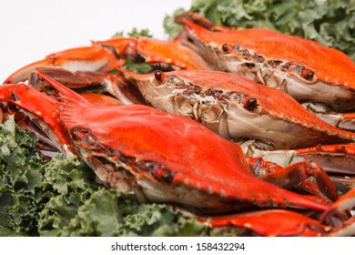 Steamed Blue Crabs on white background, one of the symbols of Maryland State and Ocean City, MD
