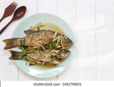 Steamed Blue Point Grouper fish with soy sauce in white dish,Thai food for health.