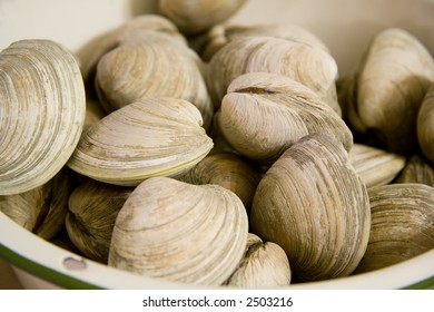 Steamed Clams in a Bowl Ready to Eat