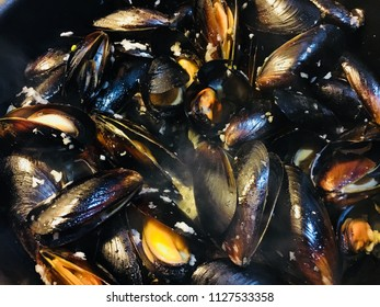 Steamed clams seafood
