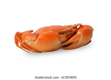 Steamed crab isolated on white background. Clipping path included.