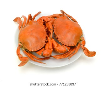 Steamed Crab Isolated on white background