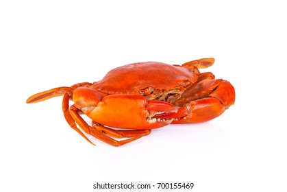 Steamed Crab on white background.
