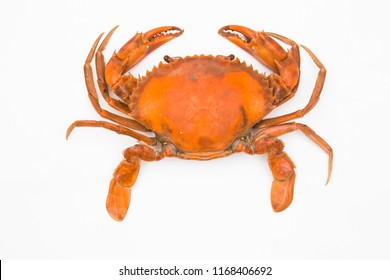 Steamed craps isolated on a white background,