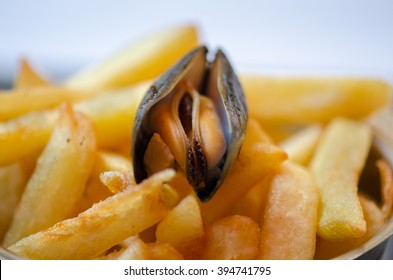 Steamed mussels and french fries
