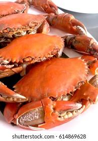 Steamed sea crab
