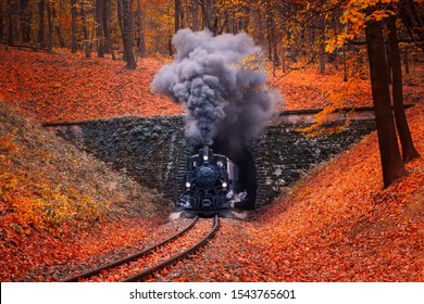 Steam-engine locomotive coming from tunnel, emits dense gray smoke through the chimney. Autumn forest in Budapest beautiful colors and fallen leaves in the background. Retro style image