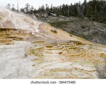Steaming hot water carrying minerals from underground made colorful terraces In Yellowstone National Park, Wyoming USA.