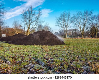 Steaming pile of manure on farm field in the winter.