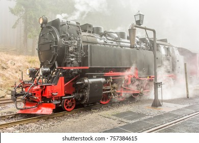 Steaming steam locomotive in a forest in fog