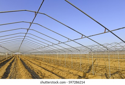 Steel frame structure of greenhouse