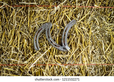 A steel horseshoe on straw welded into the letter N