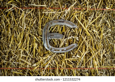 A steel horseshoe on straw welded into the letter E