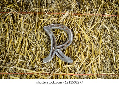 A steel horseshoe on straw welded into the letter R