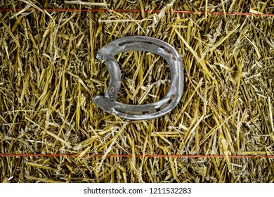 A steel horseshoe on straw welded into the letter D