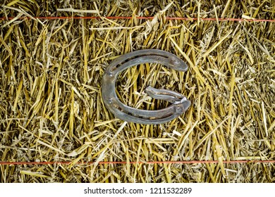 A steel horseshoe on straw welded into the letter G