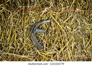 A steel horseshoe welded into the letter F