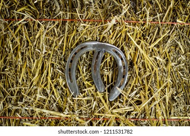 A steel horseshoe welded into the letter M