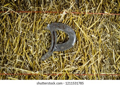 A steel horseshoe welded into the letter P