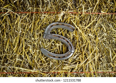 A steel horseshoe welded into the letter S