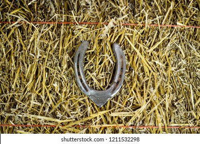 A steel horseshoe welded into the letter V