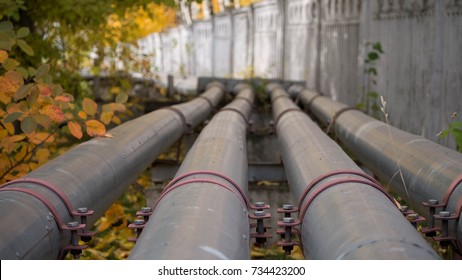 Steel pipes outdoors against the background of trees and walls. autumn. 4 pipes. perspective, vertically. heating season.