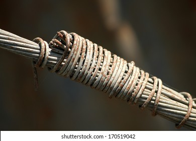 Steel wire for bunch steel cable