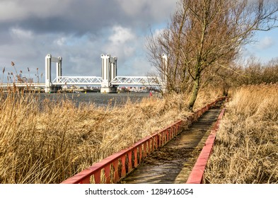 Steel and wood footbridge through a tidal floodplain in nature reserve Ruigeplaatbos naer Hooglviet, The Netherlands with Botlek bridge and industrial zone in the background
