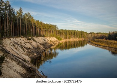 Steep bank of the river Gauja on a sunny spring evening, Latvia.