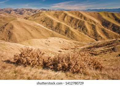 Steep dry grass hills around Blenheim in South Island of New Zealand